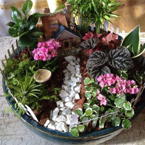 238 Best Dish Gardens Images On Pinterest Miniature Dish Garden Ideas