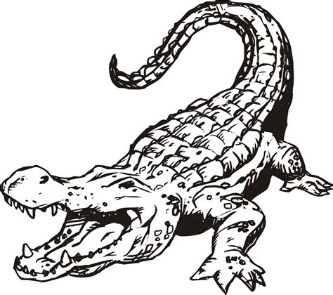 Free Coloring Page Alligator | free printable alligator coloring pages for kids