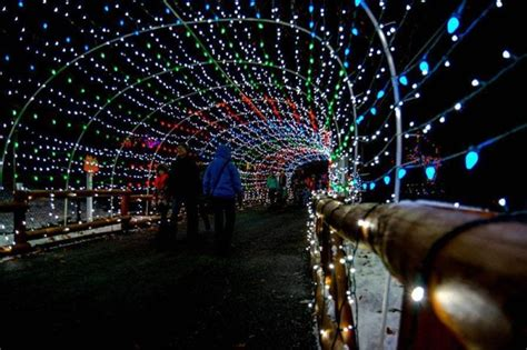 lehigh valley zoo light lehigh valley zoo pennsylvania s tunnel of lights will