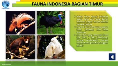 Best Seller Garuda Media Cd Tutorial Photoshop gambar burung di pohon gambar c