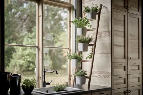 indoor herb garden ideas   kitchen