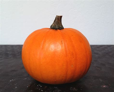 Product Find Pumpkin Sugar 2 by How To Cook A Whole Pumpkin In A Pressure Cooker The