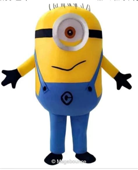 carl minion bouncy castle hire  ross  wye