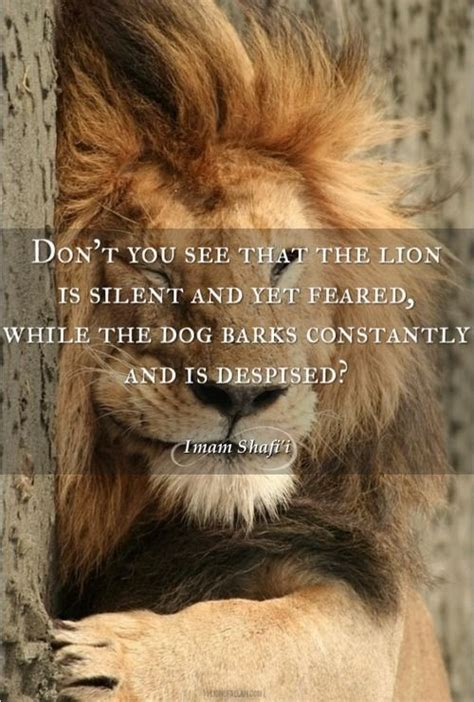 imam shafii dont     lion  silent
