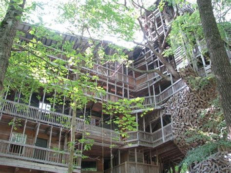 Cool Bird House Plans fairytale treehouses come to life luxuryestate com blog