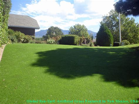 pet turf artificial grass for dogs portland oregon