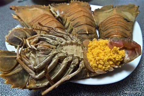 slipper lobster 琵琶虾 opening slipper lobster justin my