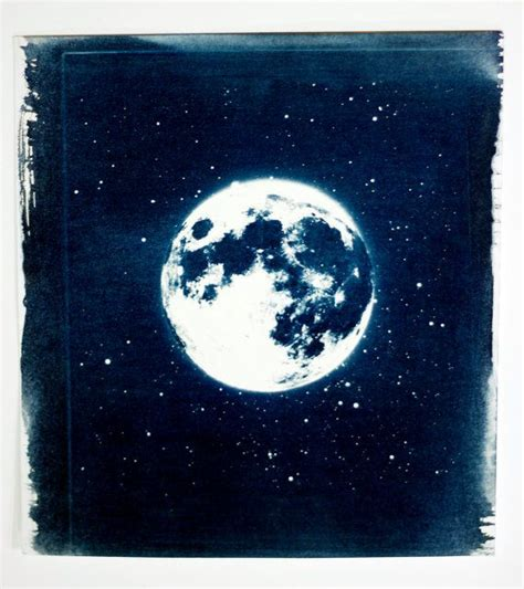 How To Make Cyanotype Paper - 102 best cyanotypes images on