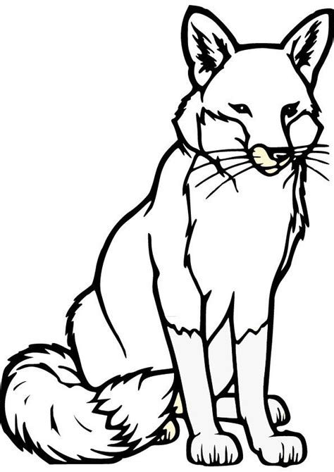 Fox Coloring Pages by Fox Drawing Fox Coloring Pages Foxy Fox
