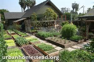 Healthy Urban Kitchen - how to grow 6 000 lbs of food on 1 10th acre home design garden amp architecture blog magazine
