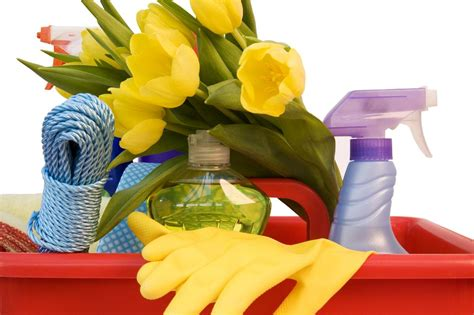 spring cleaners start the spring cleaning green and save money with 25 diy