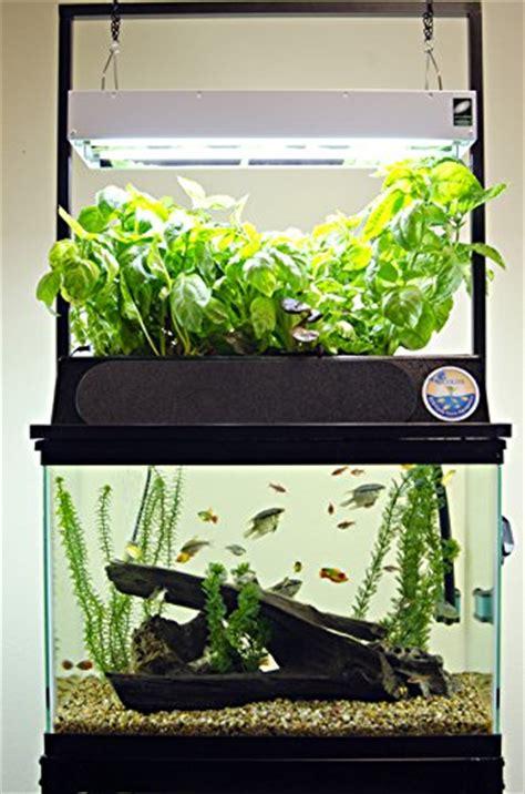 Starterkit Aquaponik starting aquaponics starter kits aquariums