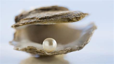 mother of pearl haiku