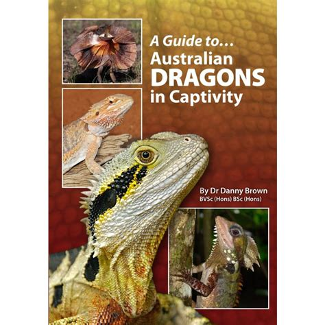 animals in captivity books guide to australian dragons in captivity book amazing