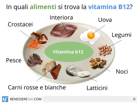 quali alimenti contengono vitamina b 187 alimenti contenenti vitamina b