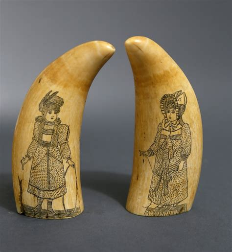 sperm whale teeth pair  whaleman scrimshawed sperm