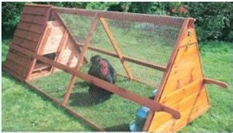 portable backyard chicken coop kamena complete how to build a chicken coop for 20