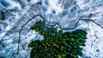 Nat Geo Photo Contest 2016 Winners these are the top drone photos in the world