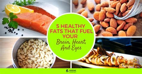 healthy fats 5 healthy fats that fuel your brain and