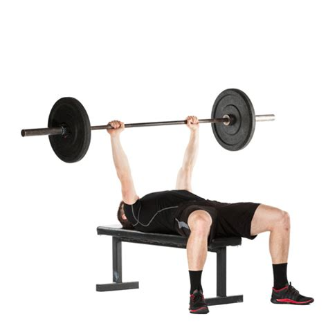 bench press motion the complicated relationship between baseball and the