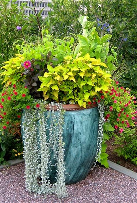 container garden designs and recipes so you can easily recreate them