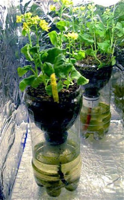 recycle bottle  watering bottle garden hydroponic