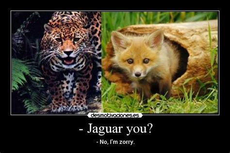imagenes jaguar you jaguar you desmotivaciones
