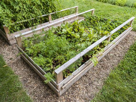 City Vegetable Garden Big City Soil Big Trouble Ask Dr Weil