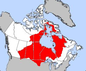Modification License Winnipeg by File Hudson Bassin Png Wikimedia Commons