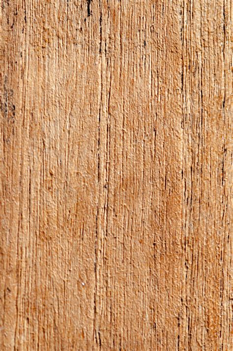 pattern wood texture blank pattern wood texture close up pattern pictures