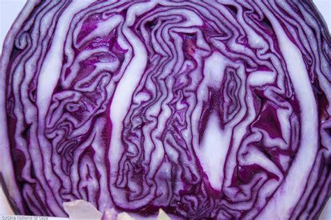 cucinare il cavolo rosso lenticchie di onelia in tegame con julienne di cavolo