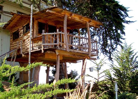 tree house exellent home design tree house design
