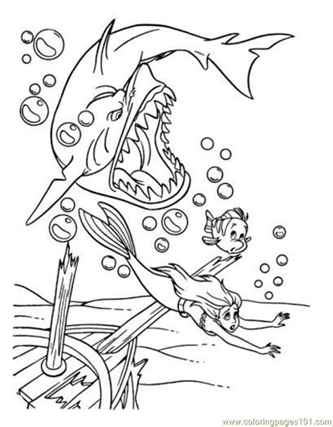 basking shark coloring page free coloring pages of basking shark