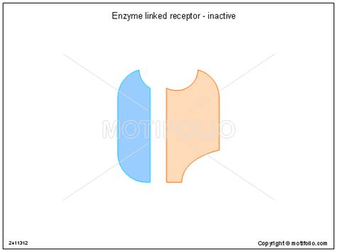 enzyme template enzyme linked receptor inactive ppt powerpoint drawing