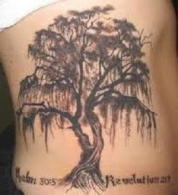 willow tree tattoo meaning tree tattoos designs ideas meanings and photos tree