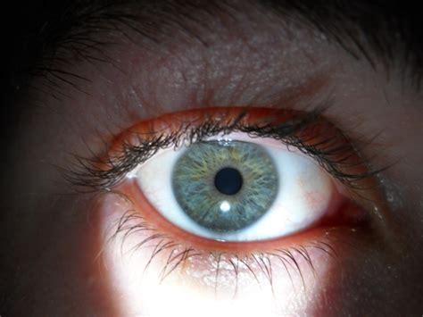 blue green eye color file blue green grey eye jpg wikimedia commons