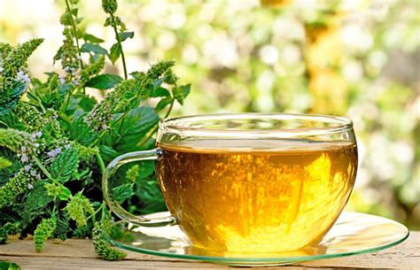 14 amazing health benefits of peppermint tea