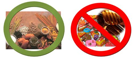alimentos azucarados bioregulaci 243 n metabolismo actividad f 237 sica y metabolismo
