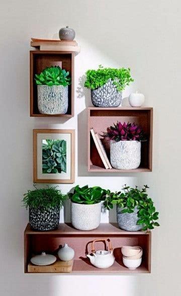 decorar mi cuarto feng shui decoracion con plantas para interiores feng shui como