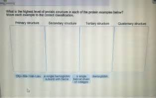 u protein level what is the highest level of protein structure in