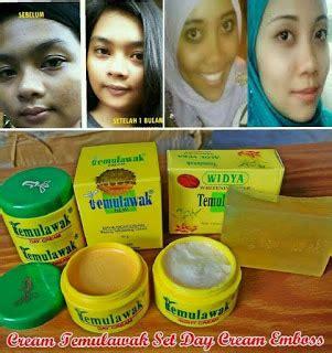 Paket Jerawat Probeauty temulawak kosmetik perawatan wajah kosmetik