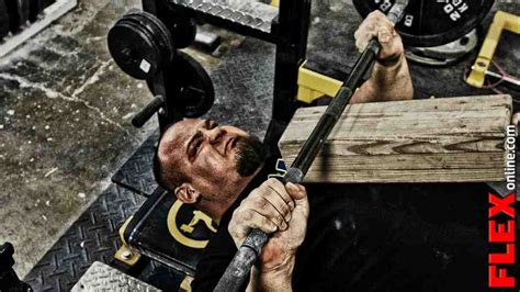 strongman bench press only the strong flex online