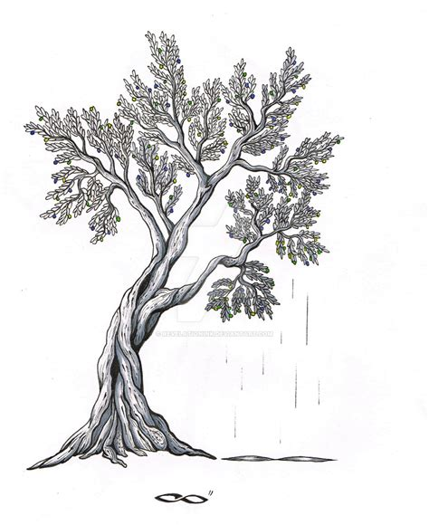 olive tree wallpaper olive tree by revelationink on deviantart