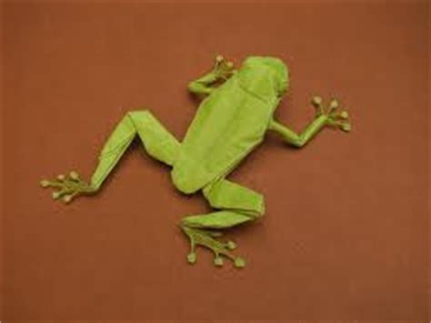 Origami Tree Frog - origami maniacs origami tree frog robert j lang