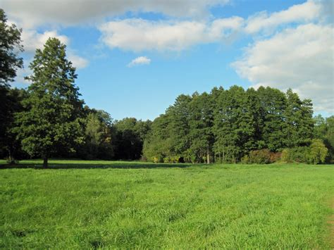 free images landscape tree nature forest sky field