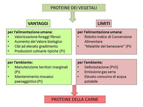 apporto proteico alimenti 187 proteina e