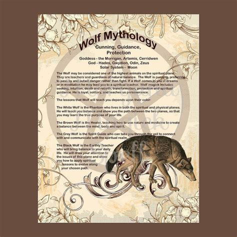 of the wolf books 1000 ideas about witch spell book on spell