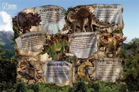 dinosaurs with special reference to the american museum collections books history museum dinosaur facts poster sold at