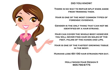 Hair Stylist Career Info 301 Moved Permanently