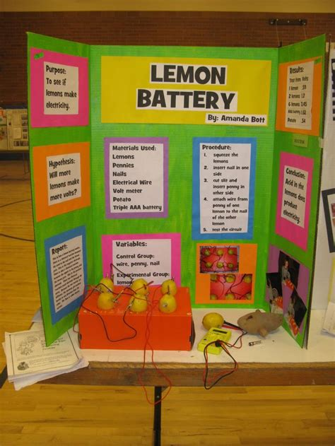 Lava L Science Fair Project by Best 25 4th Grade Science Projects Ideas On